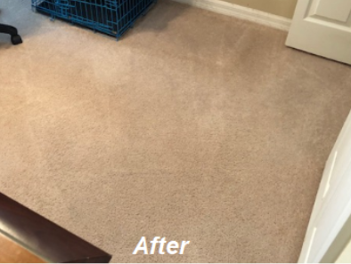 Carpet Cleaning in Orlando Florida